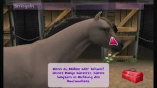 Pony Friends 2 , Testbericht , Wii , 2/3
