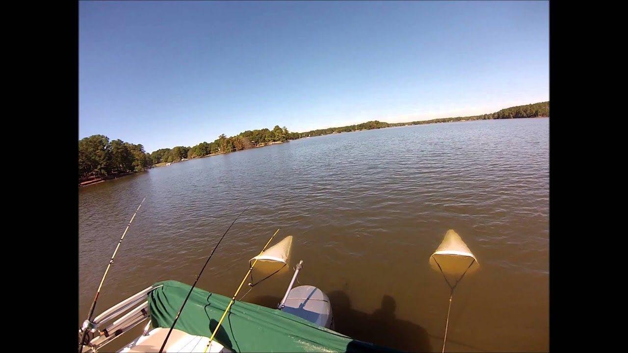 Lake murray sc catfishing with cut bait october 10 2013 for Lake murray fishing report
