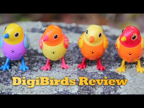 DigiBirds Review. Interactive, Tabletop Birds That Sing And Tweet