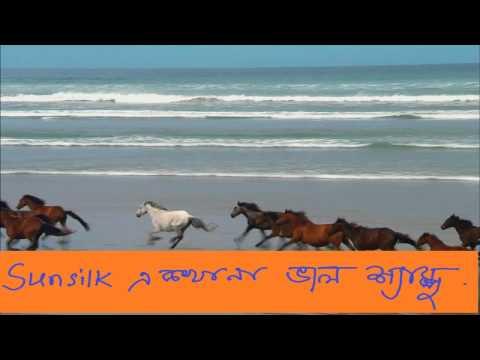 Funny Bangla Natok,Comedy Bangla Natok, Bangla Eid Natok