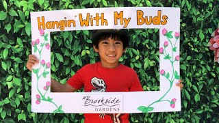 Children's Day | Fabulous Family Fun Day | Creativities for Kids | Brookside Gardens, Maryland, USA
