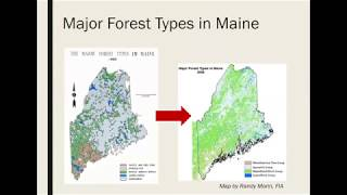Mixedwood Management: Concepts and New Findings (CFRU 2019 Webinar Series #2)