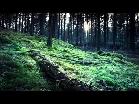 Matt Bowdidge & Phil Taylor - Power Cut [Mental Asylum Records]