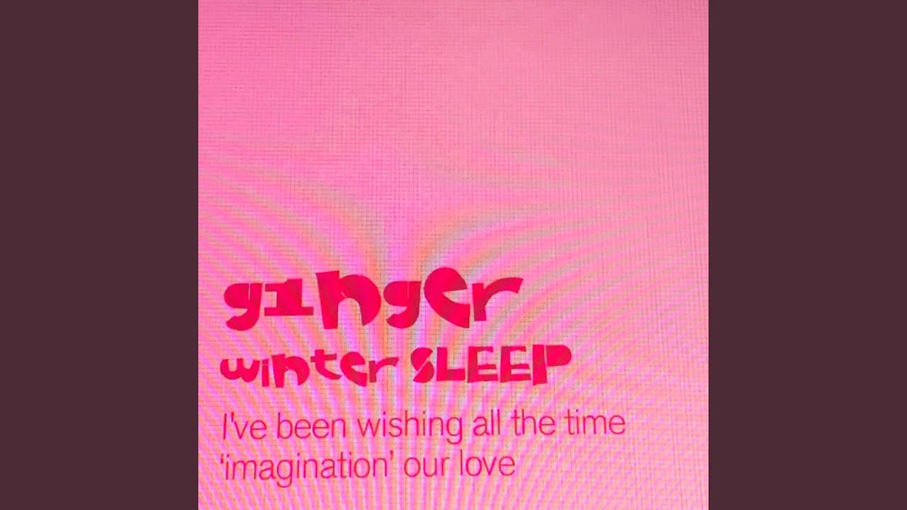 g1nger - winter SLEEP