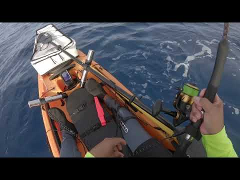 Offshore Kayak Hawaii Fishing Yellowfin Tuna Shibi