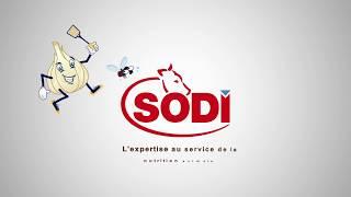 SodiPatur'ail : bloc de sel à l'ail qui protège des insectes !