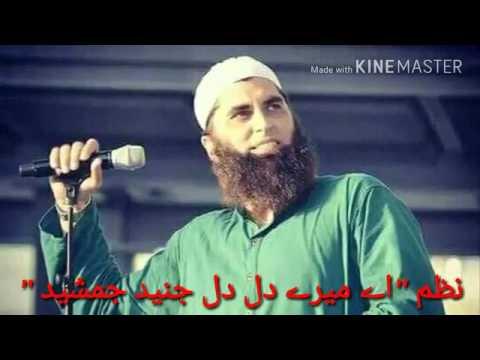 HAFIZ ZAIN UL ABDEEN AND HAFIZ ATHAR JALALI TRIBUTE TO SHAHEED JUNAID JAMSHAID.