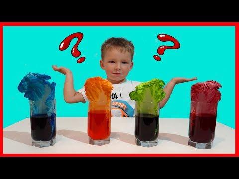 Как растения пьют воду? Наш новый эксперимент!!