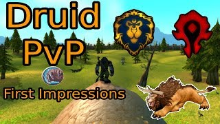 Druid PvP - Early Impressions