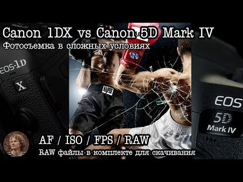 Тест: Canon 5D Mark IV vs Canon 1DX (ISO, AF, RAW)
