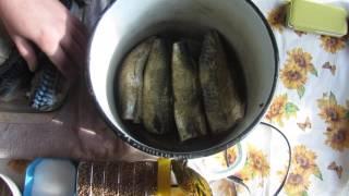 """""""Перепёлкино"""" Подготовка скумбрии для горячего копчения."""