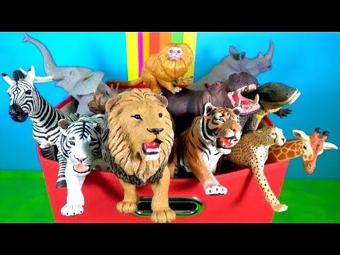 Learn Wild Animals - Animals - Lion Tiger - Fun Kids Toys - What's in the Box?