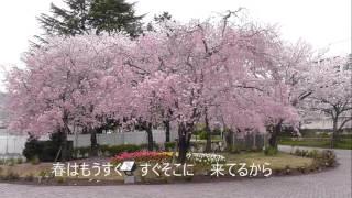 2016/3/9発売 作詞:麻こよみ 作曲:徳久広司.