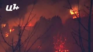 Արտավանի անտառները  շարունակվում են այրվել