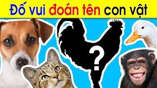 image Câu đố vui cho bé về con vật đố bé con gì | Giáo dục trẻ em ECE