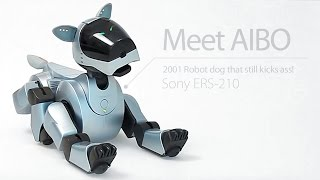 AIBO, Retro robot dog that still kicks ass - Sony ERS-210