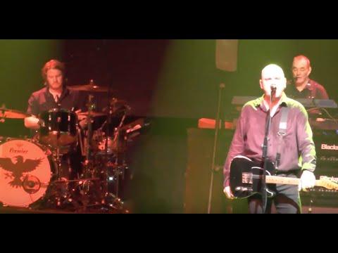 The Stranglers - Golden Brown (Het Depot Leuven 19/11/2015)