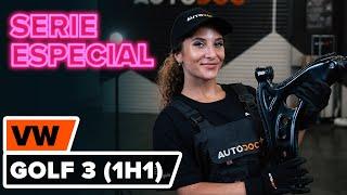 Desmontar Brazo oscilante VW - vídeo tutorial