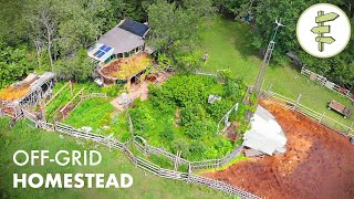 12 YEARS Living Off-Grid on a Sustainable Homestead in a Self-Built Cob Home