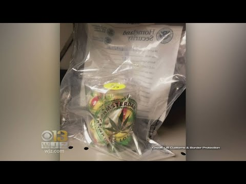Authorities Seize Lollipops Laced With Marijuana At BWI Airport