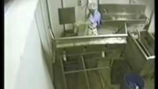 Lenah Valley Possum Abbatoir