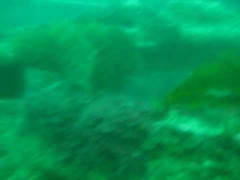 Ian & Scott Diving Avalon crane wreck. lincod,schools,structure