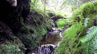 Fairy Pools Part 2 Chilled Nature Meditation