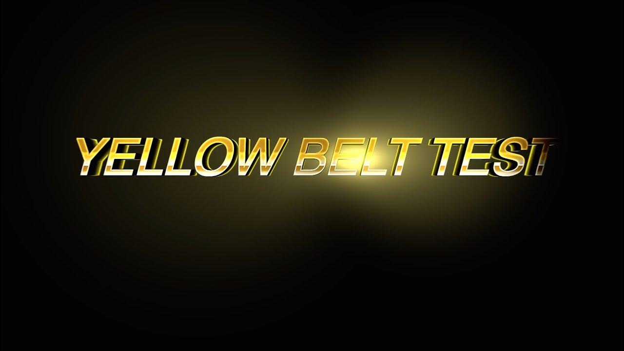 Krav Maga Unyted Yellow Belt Test
