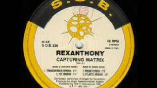 REXANTHONY - Capturing Matrix