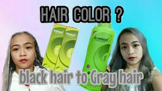 VLOG#06: HOW I ACHIEVED MY GRAY HAIR + (Story of my dogs) | Bianca Eunice Vlogs ♡