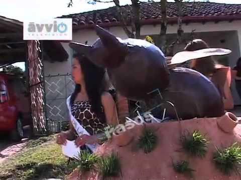 GUADALUPE SANTANDER FERIAS Y FIESTAS 2012.mp4