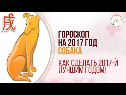 Гороскоп на 2017 год Петуха, китайские гороскопы, любовный