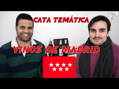 DO Vinos de Madrid - Cata temática