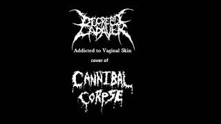 DECREPIT CADAVER {chile} ´addicted to...´ CANNIBAL CORPSE cover