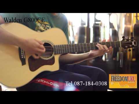 Review Guitar กีตาร์โปร่งไฟฟ้า Walden G800CE by Freedom Uku