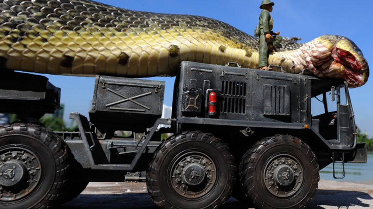 Giant Snake Caught in Red Sea - YouTube - photo#37