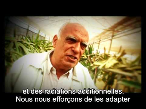 Innovation at Ben-Gurion University of the Negev (with French subtitles)