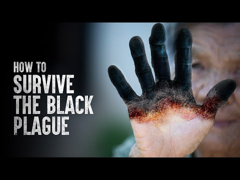 How to Survive the Black Plague