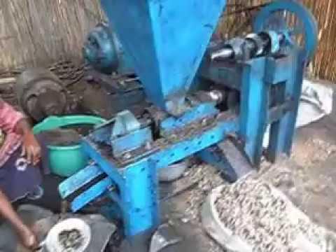 presse à huile de palmiste (palm kernel oil expeller)