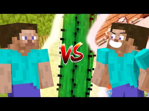 Minecraft vs Animation Life