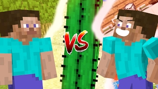 Minecraft vs Animation Life