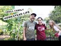 Making THIS (Homestead) LIFE WORK | VLOG