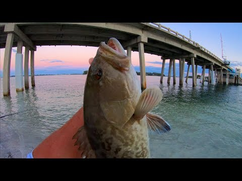 LIGHT TACKLE Bridge Fishing CHALLENGE -Gag Grouper And Flounder! (West Coast Florida Fishing)