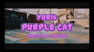 YURI$ - PURPLE CAT (Official Video) YURI$ - PURPLE CAT (Official Vi...