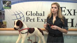 Top Training Tools From Global Pet Expo 2012