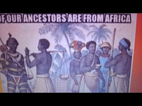 20 millions Africans to America ?? but no slave ships