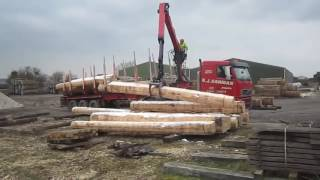 Amazing Heavy Equipment, giant tree cutting machine, wood chipper machine, forestry smart
