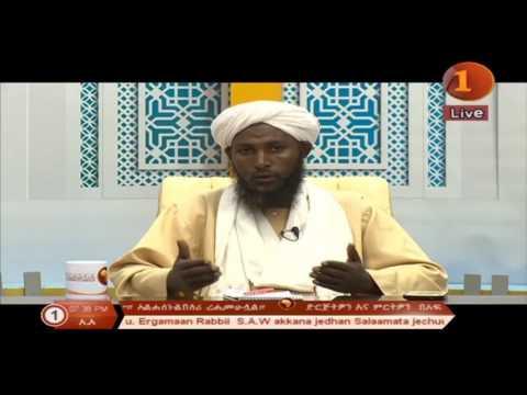africa tv oromifa alfatawa