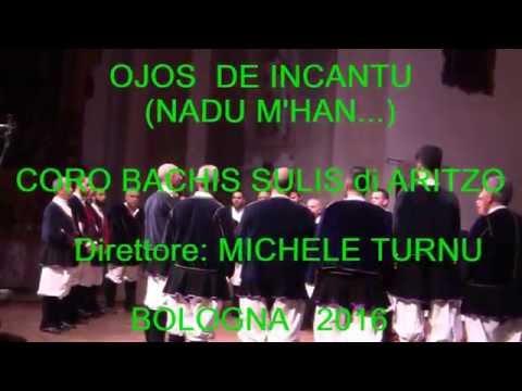 OJOS DE INCANTU  -  (Bologna 2016) -  Coro