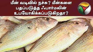 Meen Vadivil Nachchu | Puthiya Thalaimurai Tv